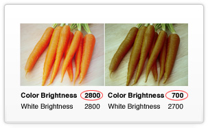 Color Brightness Summarized - Watch Now